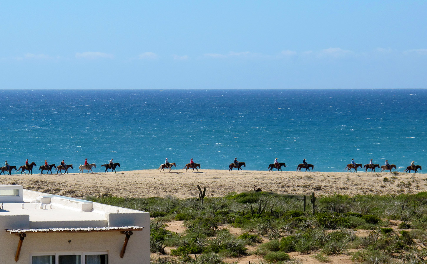 Horseback Riding on the Dune - Yoga Retreat - Mexico