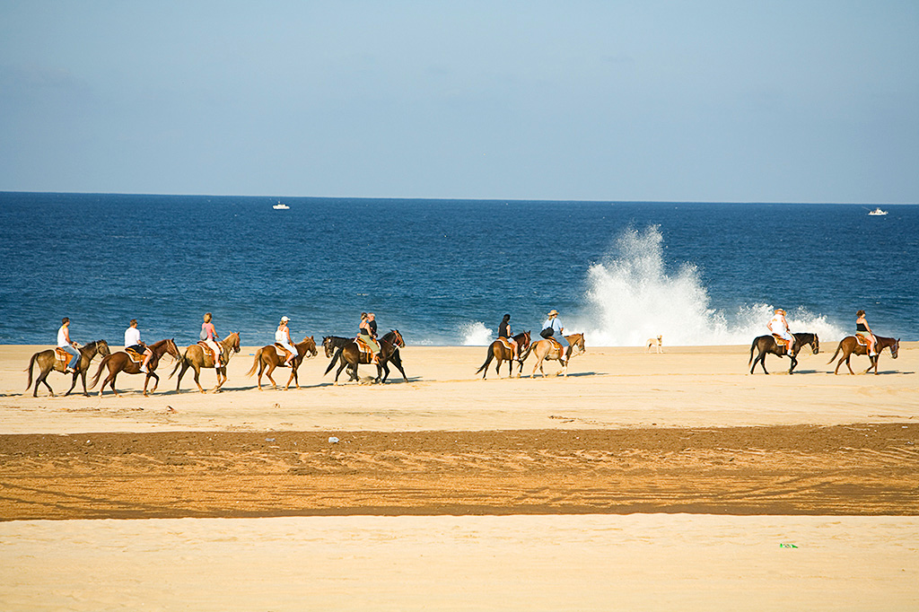 Horseback Riding on the Beach - Yoga Retreat - Mexico