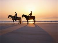 Horseback Riding at Sunset - Yoga Retreat - Mexico
