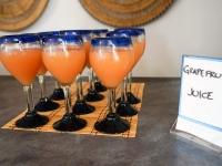 Fresh Grapefruit Juice - Yoga Retreat - Mexico