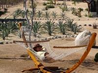 Hammock in the Garden - Yoga Retreat - Mexico