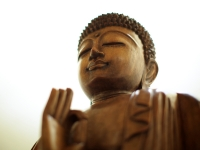 Wooden Buddha in the Moon Studio - Yoga Retreat - Mexico