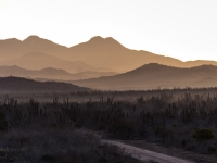 Morning Glow on the Mountains to Start the Day- Yoga Retreat - Mexico