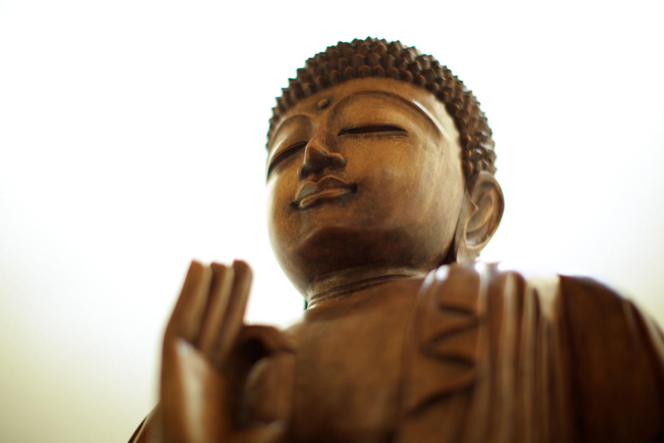 Buddha Sculpture - Yoga Retreat - Mexico