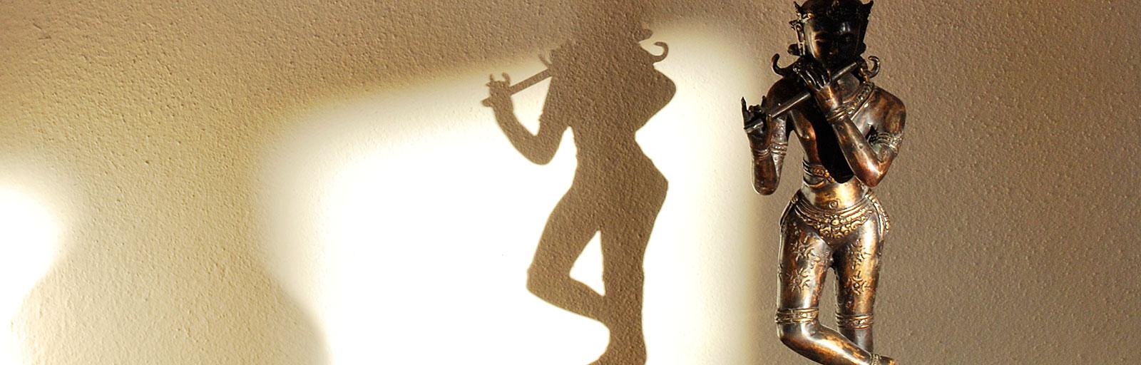Meditation & Yoga Retreats in Mexico: Krisha Plays with Light and Shadow
