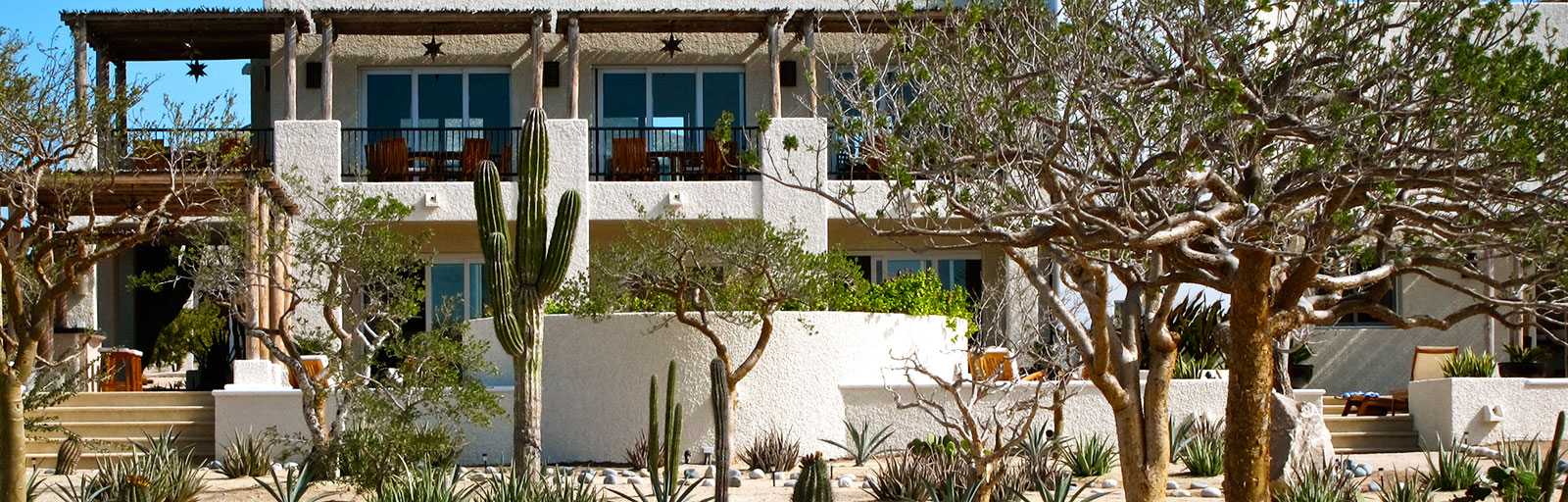 Mexico Yoga Retreat Center in Baja: Community Building & Gardens