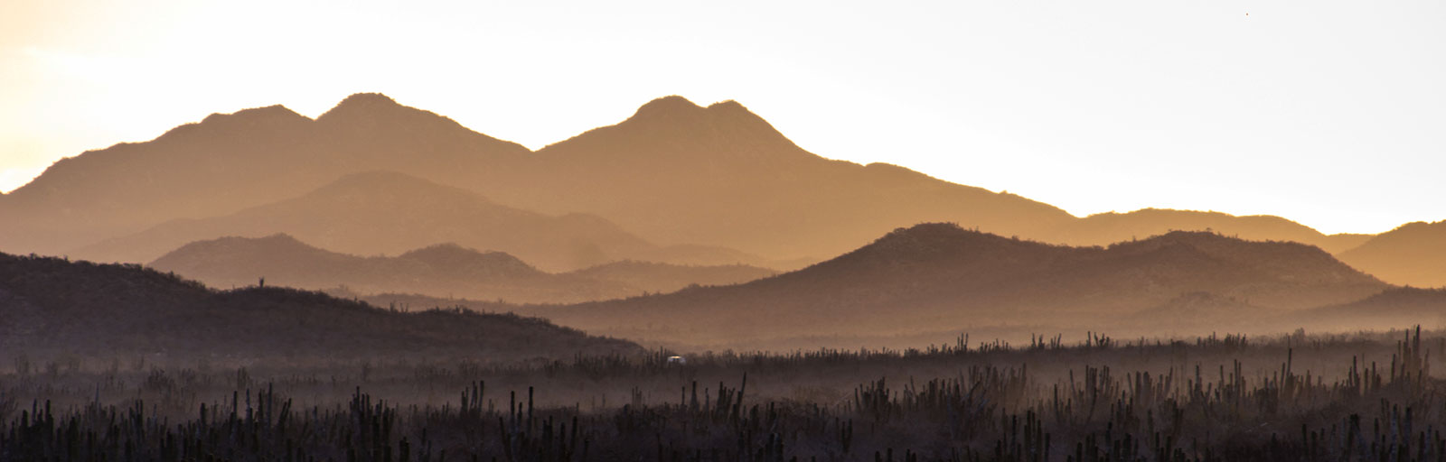 Yoga & Wellness Retreats in Mexico: Sunrise Glow in the Mountains